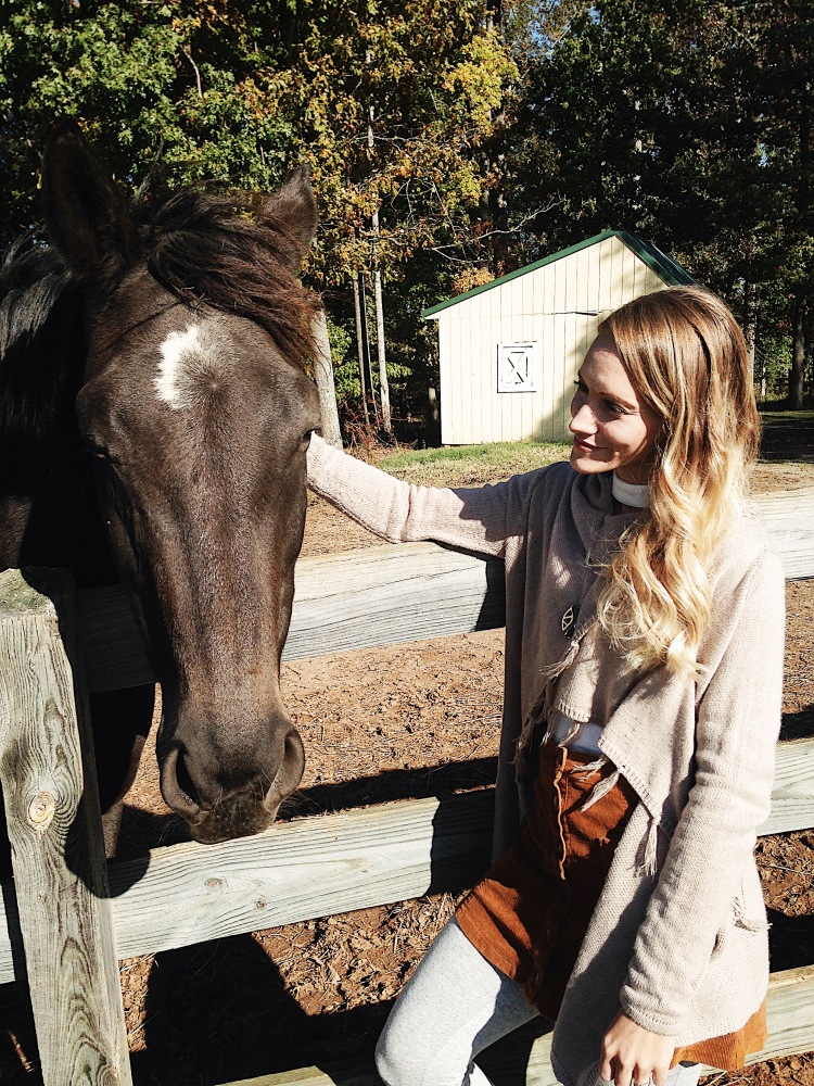 Horsin Around in Virginia by Courtney Livingston