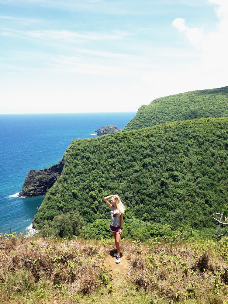 The Ultimate Island Of Hawaii 6 Day Road Trip: Meals, Excursions, and Where to Stay!